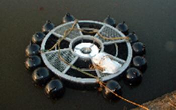 ため池再生工事